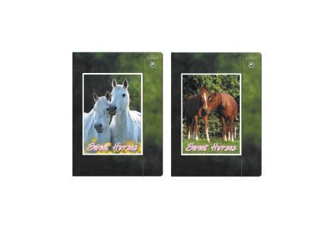 Teczka z gumką A4 Horses Starpack