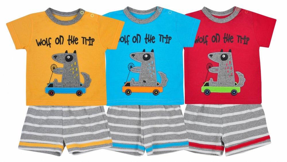 Koala Baby komplet bawełniany koszulka i spodenki Wolf lato 80 Czerwony