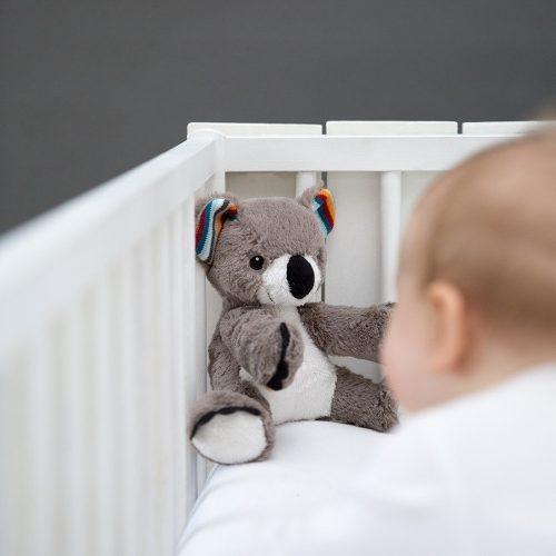 Maskotka przytulanka szumiący Miś Koala Zazu