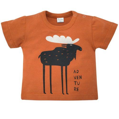 Pinokio bluzka z krótkim rękawem T shirt Bears Club 74 Brąz